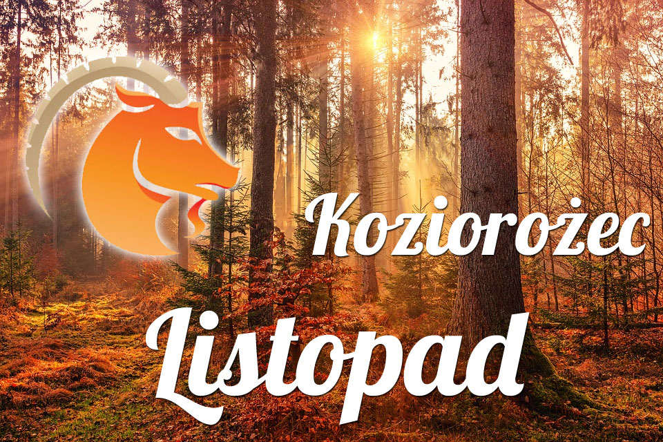 Koziorożec horoskop Listopad