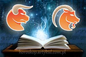 Byk + Koziorożec - horoskop partnerski