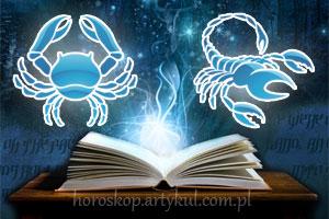 rak-skorpion