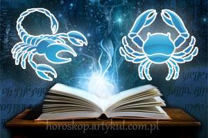 skorpion-rak