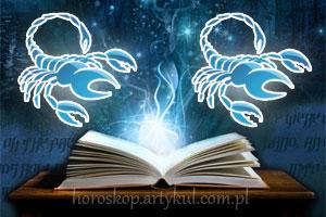 skorpion-skorpion