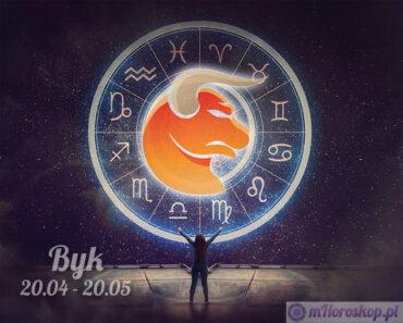znak zodiaku byk