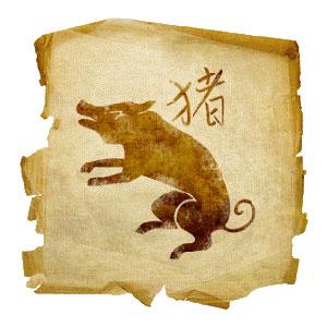 Zodiakalna Świnia bywa naiwna i nieco nazbyt łatwowierna.