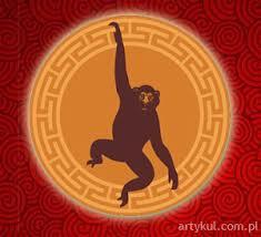 Małpie można pozazdrościć kreatywności i pomysłowości.