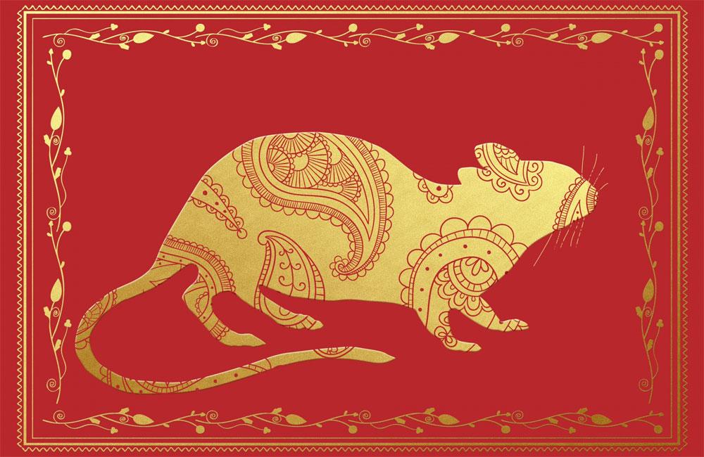 Szczur - cechy charakteru i osobowość
