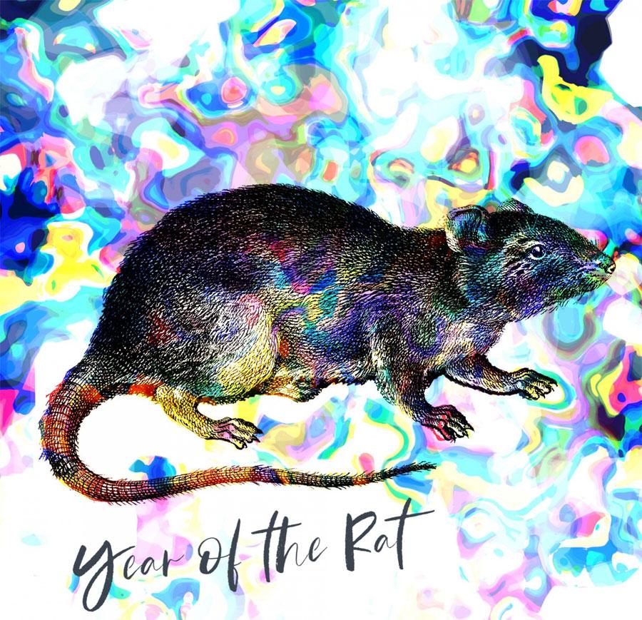 Szczur - Miłość i sprawy sercowe