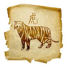 Tygrys lubi ryzyko i niebezpieczne sytuacje.