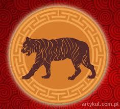 Tygrysy to zazwyczaj osoby bardzo porywcze.