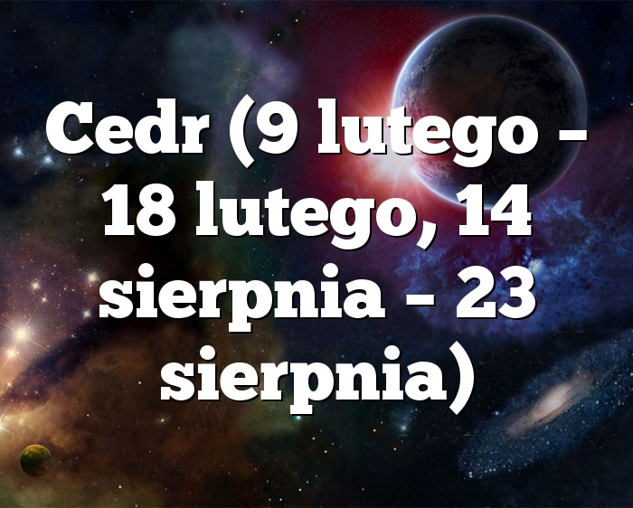 Cedr (9 lutego – 18 lutego, 14 sierpnia – 23 sierpnia)