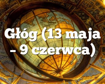 Głóg (13 maja – 9 czerwca)