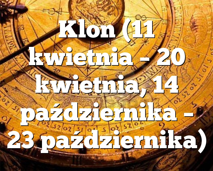 Klon (11 kwietnia – 20 kwietnia, 14 października – 23 października)