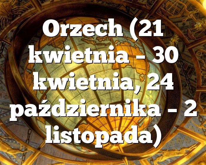 Orzech (21 kwietnia – 30 kwietnia, 24 października – 2 listopada)
