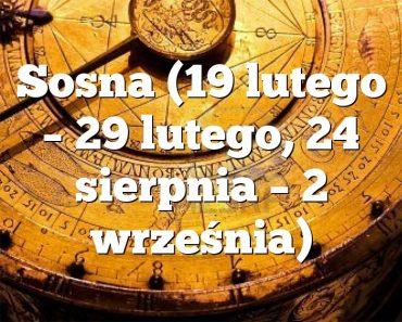 Sosna (19 lutego – 29 lutego, 24 sierpnia – 2 września)