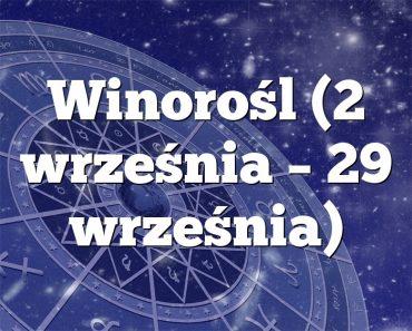 Winorośl (2 września – 29 września)