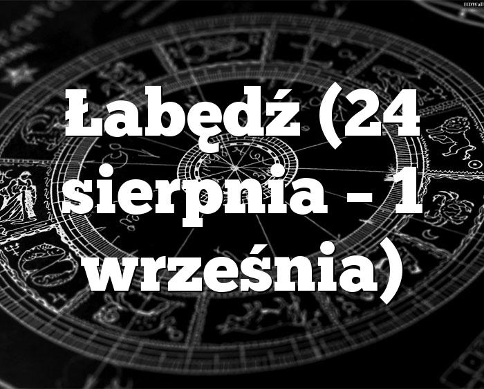 Łabędź (24 sierpnia – 1 września)