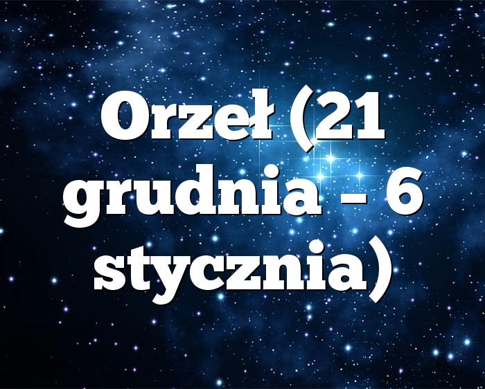 Orzeł (21 grudnia – 6 stycznia)
