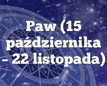 Paw (15 października – 22 listopada)