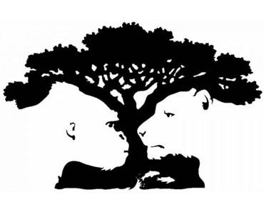Trener randek bonsai