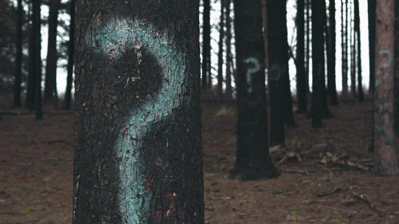 Czy jestem dobrą osobą? - odpowiedź na swe rozterki znajdziesz dzięki innemu, ciekawszemu pytaniu...