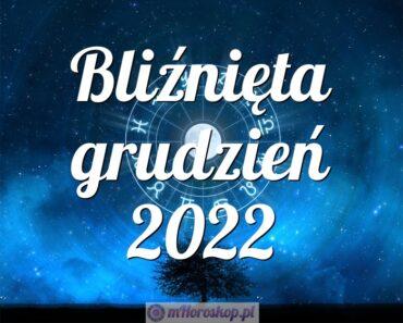 Bliźnięta grudzień 2022