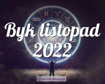 Byk listopad 2022