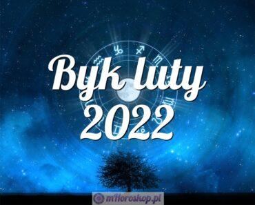 Byk luty 2022