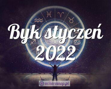 Byk styczeń 2022