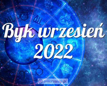 Byk wrzesień 2022