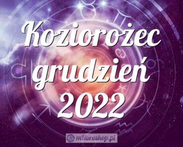 Koziorożec grudzień 2022