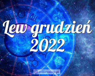 Lew grudzień 2022