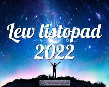 Lew listopad 2022