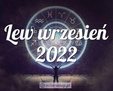 Lew wrzesień 2022