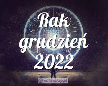 Rak grudzień 2022