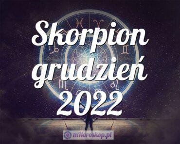 Skorpion grudzień 2022
