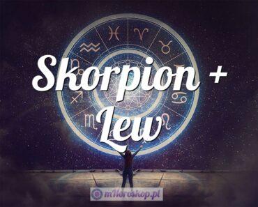 Skorpion + Lew