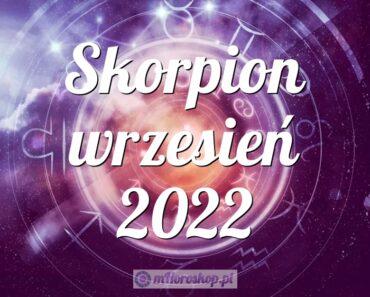 Skorpion wrzesień 2022