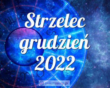 Strzelec grudzień 2022