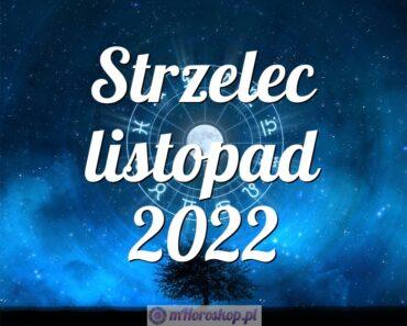 Strzelec listopad 2022