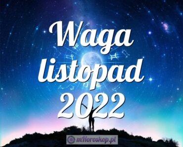 Waga listopad 2022