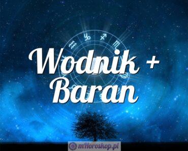 Wodnik + Baran