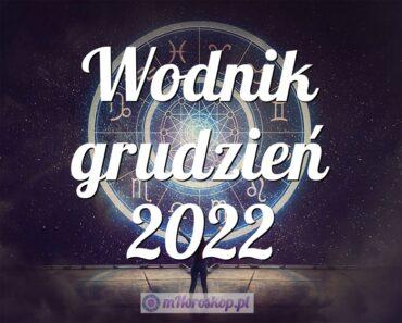 Wodnik grudzień 2022
