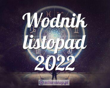 Wodnik listopad 2022